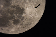 Plane photobombing the Full Moon (backyardastronomyguy) Tags: moon photobomb fullmoon transit plane jettrail jet trail exhaust tyco crater canon eos 60d skyquest xt10 dobsonian airbus astronomy telescope lunar astrophotography travel sky night