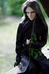 Wolf and his rose (fraill.) Tags: blood bjd ios wilk harryhaller immortalityofsoul