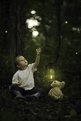 Catching Fireflies (Phillip Haumesser Photography) Tags: light boy playing green nature boys kids forest children fun kid woods child play natural sony magic 85mm adventure imagination magical fireflies samyang philliphaumesser sonya7ii