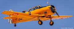T-6 Texan (Ignacio Ferre) Tags: madrid yellow airplane nikon aircraft aviation military airshow amarillo avin fio texan t6 avioneta northamericant6 lecu cuatrovientos spanishairforce fundacininfantedeorleans