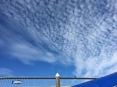 Valdez Alaska USA (eriagn) Tags: blue blues tones clouds cloud formation alaska usa valdez bird fish fence architecture raven crow eriagn structure ngairehart photography art cloudformation cirrus lines linear pattern shape nature