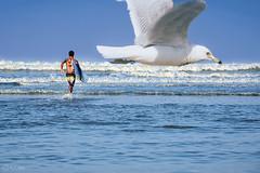 wish .... (R.I.Jewel) Tags: lifestyle moments sky sea seabeach coxsbazar bird man surfer