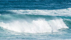 The power and beauty of the ocean! (Merrillie) Tags: nikon nature water d5500 nswcentralcoast newsouthwales sea nsw beach centralcoastnsw shellybeach photography landscape outdoors waterscape waves centralcoast seascape australia