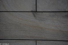 Sandstein (Arenito) (correia.nuno1) Tags: arenitos deutschland geologia geology kln sandestone sandstein