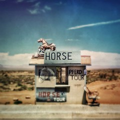 Horse, Pferd. Monument Valley... (allophile) Tags: shotoniphone6s mobilephotography tintype iphoneography hipstamatic roadside horse navajonation arizona