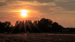 Meridian Idaho Sunset (Matt Barlow Photography) Tags: sun house country farm boise meridian sunset light