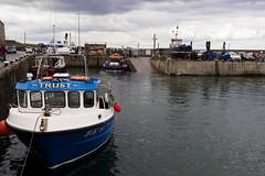 sea houses (pamelaadam) Tags: geolat55582648 geolon1651980 thebiggestgroup fotolog digital july summer 2016 holiday2016 boat sea seahouses northumbria engerlandshire