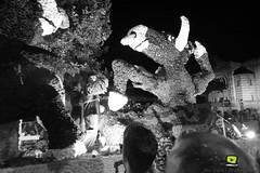 Corso-Fleuri-Selestat-2016-86.jpg (valdu67photographie) Tags: alsace corsofleuri selestat 2016 nuit international basrhin expositions fanabriques fanabriques2016 lego rosheim visite