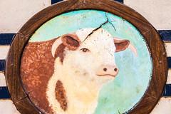 Meat (Thomas Hawk) Tags: california cambria sotosmarket usa unitedstates unitedstatesofamerica cow