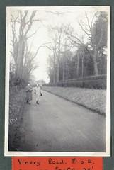 Vinery Rd Bury St Edmunds 1955 (Bury Gardener) Tags: bw blackandwhite oldies 1950s snaps england uk burystedmunds suffolk eastanglia english