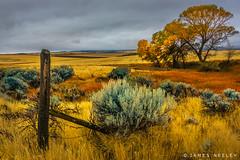 Autumn Rain on the High Prairie (James Neeley) Tags: idaho tetonvalley autumn jamesneeley