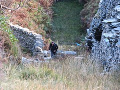 4918 Brian on an incline (Andy - Daft as a brush - don't ask!) Tags: 20161009 aaa cwmorthin geocacheevent iii incline industrialarcheology internationalearthcacheday male man mmm people person ppp qqq quarry quarryworkings tanygrisiau walk www