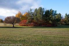 Landscape (Jupatrak) Tags: finland fall suomi nikond300 tokina1116mm landscape