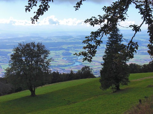 Zurich-2016- - 57