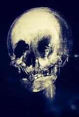 Grim Reflections (LornaTaylor) Tags: copyright2016lornataylor lensbabycomposer lornataylor taylorimagesca edge80 lornataylorphotography skull