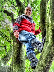 Who said i cant climb a tree at my age! (Missy Jussy) Tags: trevorkerr man people portrait trees woodland wood light sunlight leaves branch
