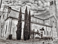 San Francesco Treviso #bnw #chiese #church #blackNwhite #biancoenero (caterinablu) Tags: bnw chiese church blacknwhite biancoenero