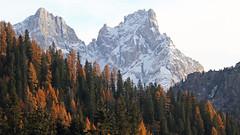 Cima Vezzana and  Cimon della Pala (Pala Group - Dolomites) (ab.130722jvkz) Tags: italy trentino alps easternalps dolomites palagroup mountains