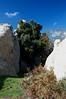 DSC_0052 (degeronimovincenzo) Tags: megaliths megaliti nebrodi agrimusco megalitidellagrimusco roccemegalitiche