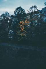(barbs--) Tags: city autumn urban berlin fall love film colors leaves analog 35mm kreuzberg dark gold abend canal poetry colours dusk cities explore analogue pentaxmesuper urbanism urbanpoetry reuterkiez maybachufer diaryofacity