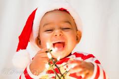 27112014-DSC00019 (Dania Beatriz (bossacubana)) Tags: navidad natale