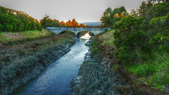Shoreline Park Bridges (yoganand.c) Tags: california bridge creek mountainview shorelinepark permanentecreek