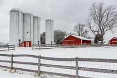 Silos at Kinder Farm (Nature as Art Photography) Tags: winter horses snow farm barns 2015 pwlandscape