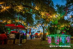 The Garden of Unearthly Delights (eyeofthewanderer) Tags: