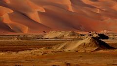 Liwa Oasis (flowerikka) Tags: sand desert dunes uae camels liwaoasis emptyquarter rubalkali globalaward2014 apricotandcinnamoncolors