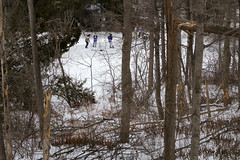 On Frozen Pond (Doris Burfind) Tags: trees winter snow game hockey boys pond woods torontomapleleafs leafs