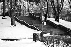 Stairway to Heaven (Mohsin Rafiq Photography) Tags: park blackandwhite monochrome newjersey nikon stairway ledzeppelin bayonne winterwonderland hudsoncounty