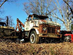 A forgotten Ford (Dave* Seven One) Tags: old rot classic ford abandoned broken vintage dead junk rust rusty forgotten junkyard roadside salvage rotted fomoco wrecker