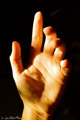 Mano. (Luis Carlos Florez) Tags: light luz hands do body lumire manos corps faire create mains destroy hacer cuerpo cahaya  dtruire decide crear    membuat  tangan decides destruir  crer   tubuh   melakukan dcide      memutuskan menghancurkan