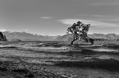 Waves on Lake Wanaka (Yani Dubin) Tags: newzealand blackandwhite lake water monochrome landscape gimp otago wanaka wakatipu lakewanaka lakewakatipu multipleexposures exposureblending widelens southernlakes d7000 luminositymasks tokinaaf1228mmf4