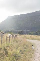 Valle de Mena (12) (cynefin_) Tags: httpcargocollectivecomcynefin valle de mena merindades burgos castilla y len villasana cynefin paisaje naturaleza