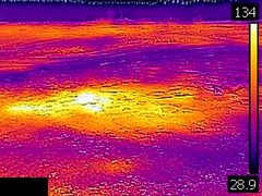 Thermal image of Plume Geyser (morning, 11 June 2016) 2 (James St. John) Tags: plume geyser hill group upper basin yellowstone hotspot volcano wyoming hot springs thermal image temperature
