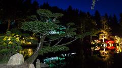 DSC05471 (regis.verger) Tags: temple zen nuit parc nocturne asiatique vgtal maulvrier