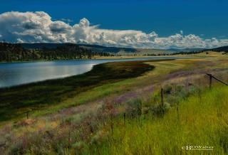 Stump Lake Beauty