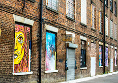 landscape colours on the mill (PDKImages) Tags: urban streetart art mill abandoned beauty lady contrast manchester graffiti eyes colours anger lips fortune hidden angry drama fortuneteller unexpected teller liom