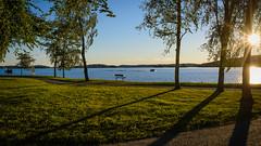 DSC_6337 (vargandras) Tags: sunset lake lakeside lakeshore grass sky bench shadow boat tree landscape cityscape pyhjrvi tampere suomi finland