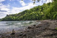 _DSC8331 (jerryho1212) Tags: nikon snow ho jerry hiniagara falls niagara d610 canada    wild lihsi          2485mm american river stream trail