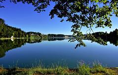 Miroir sur le lac (Diegojack) Tags: nikon nikonpassion d7200 paysages lac brt reflets miroirs eau puidoux