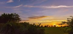 Cirrus-lined Sunset (thefisch1) Tags: sunset pasture sky cloud cirrus tree bush kansas flint hills oogle calendar prairie bluestem blue stsem grass open space pink stem interesting hay bale nikon bales horizon