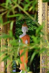 DSC_0337 (stacheltierchen) Tags: tempel pagode munich nepal buddismus travel europe nikon statue gebet religion bambus buddah buddhismus
