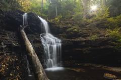 Shawnee Falls, Ricketts Glen State Park, Pa (jkrieger84) Tags: nikon d500 landscape nature falls rickettsglen sun sunstar fall leaves shawneefalls waterfall