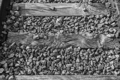 Traviesas del pasado (_altaria01669_) Tags: tren train trenes trains bahn zug maquinista lokfuhrer va via track rail carril railroad railway traviesa ventana pasado abandonado abandoned