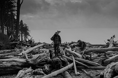 Ruby beach (miketsukerman1) Tags: travel man wood monochrome outdoors group root rubybeach