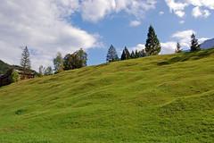 Schloss Elmau (6) - Wiesen und Natur pur ringsherum (Pixelteufel) Tags: krn klais schlosselmau bayern bavaria alpen urlaub ferien freizeit erholung ruhe tourismus wiese rasen tannen wald waldgebiet waldbestand baumbestand