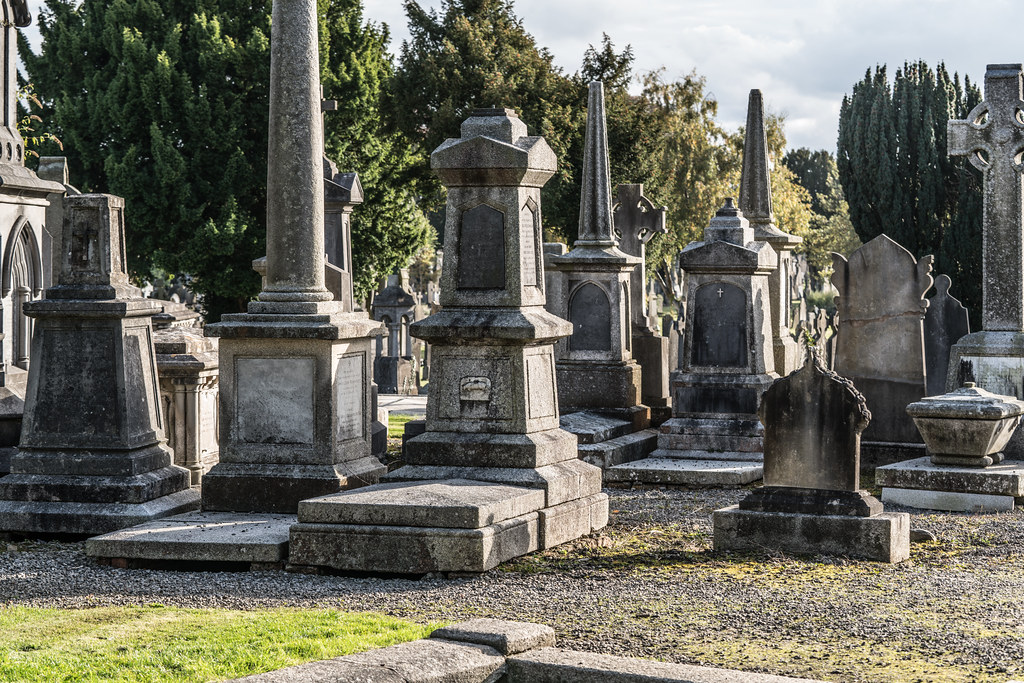 A QUICK VISIT TO GLASNEVIN CEMETERY[SONY F2.8 70-200 GM LENS]-122113