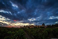 Carcassonne-042 (bonacherajf) Tags: aude carcassonne sunset citmdivale vignes coucherdesoleil remparts